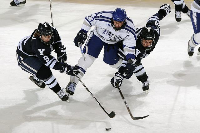 hokejový hráči